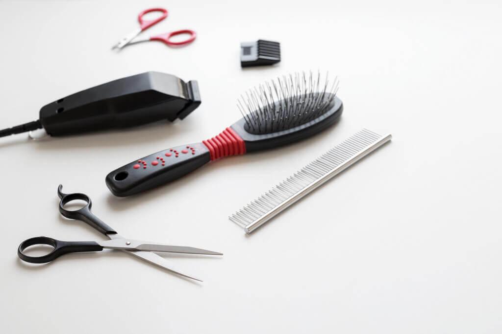 Cómo afilar cuchillas de peluquería canina